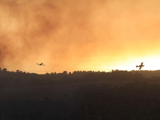 שריפה בכרמל חיפה / צלם: חגי אהרון
